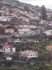 Funchal - Hillside