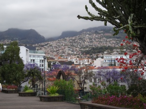 View from a park in Funchal