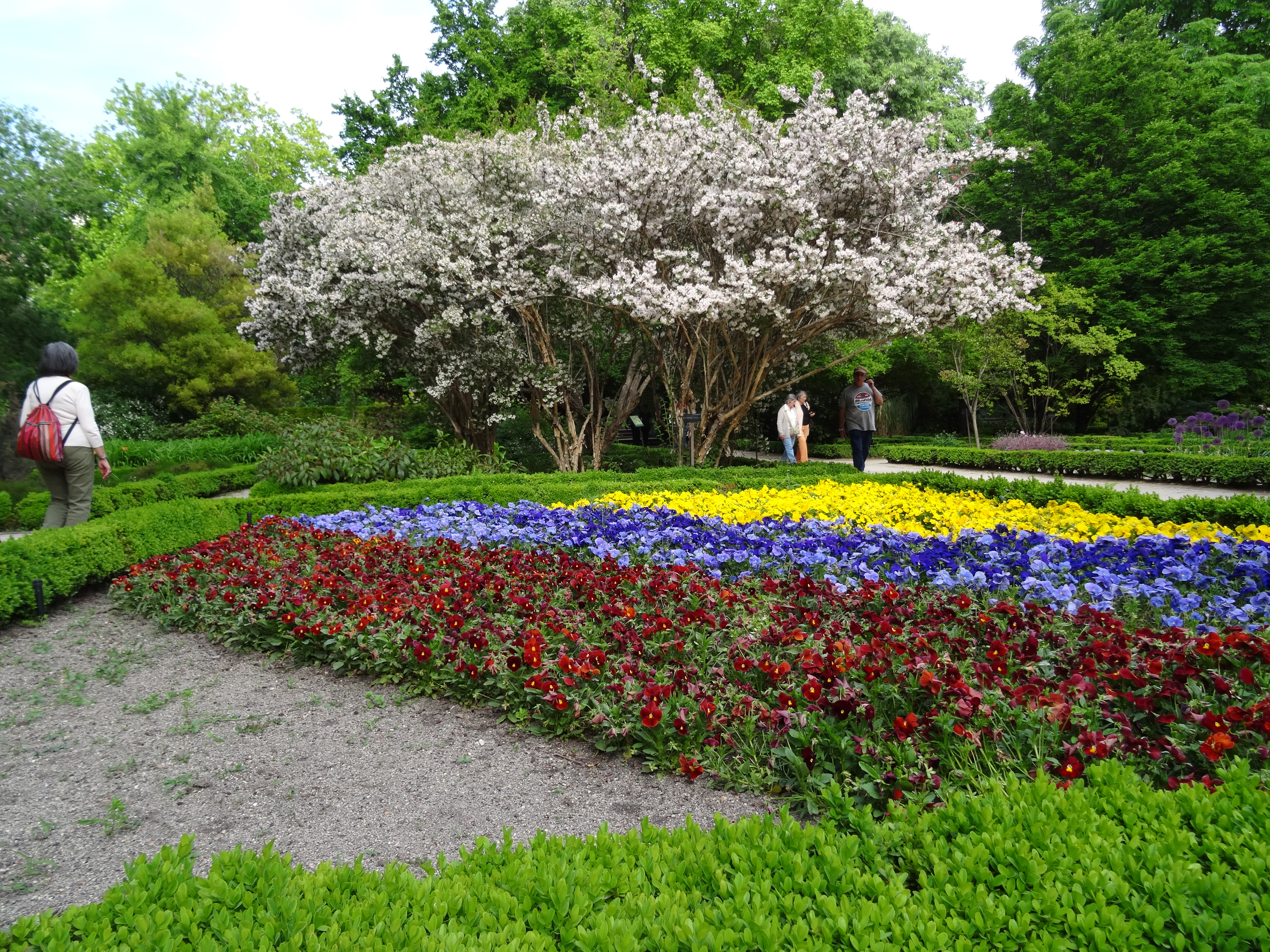 Madrid spain town of many part i andsoitbegins4me for Jardin botanico madrid precio