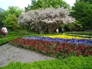 Madrid Real Jardin Botanico Garden
