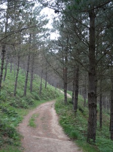 Zumaia to Deba Hike