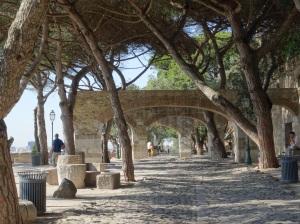 São Jorge Castle grounds