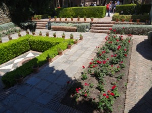 Rose garden at Alcazaba
